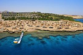Отель AA Grand Oasis Resort, Шарм-Эль-Шейх, Египет
