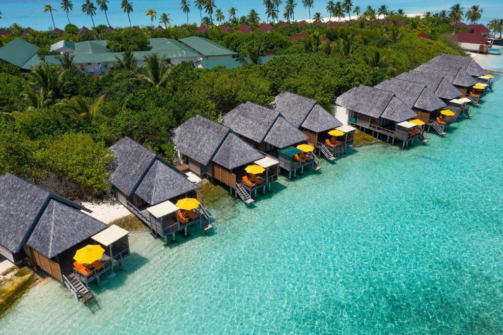Райские Мальдивы - Туристический оператор APL Travel (АПЛ Тревел)