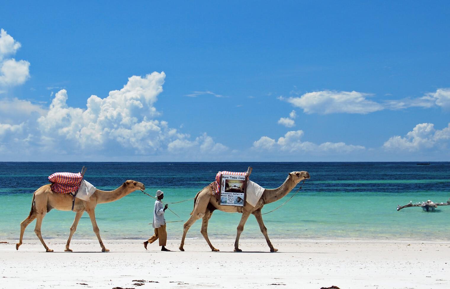 Кения + сафари в подарок - Туристический оператор APL Travel (АПЛ Тревел)