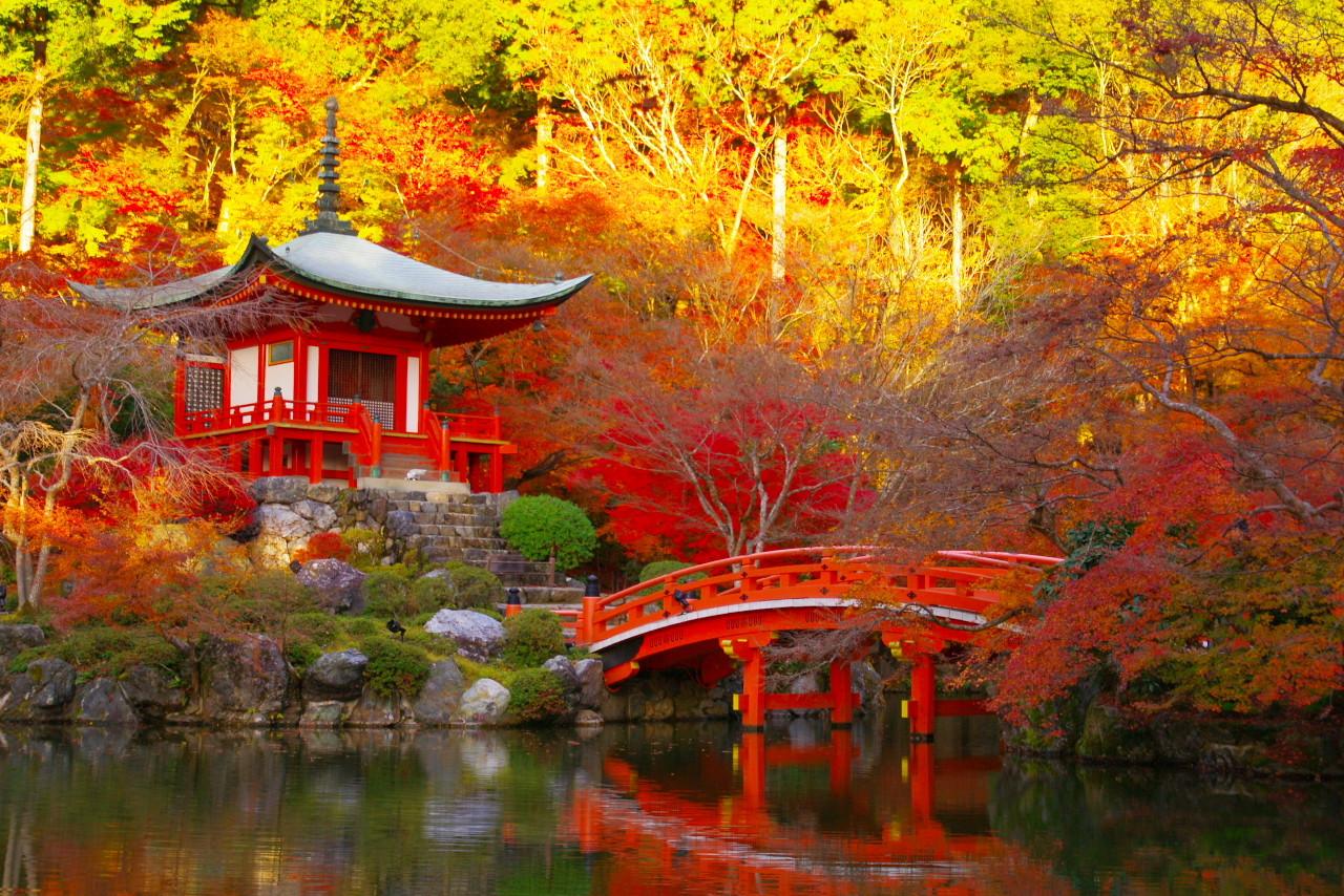 Охота за красными клёнами в круизе по Японии: Гонконг, Фукуока, Кагосима, Нагасаки - Туристический оператор APL Travel (АПЛ Тревел)