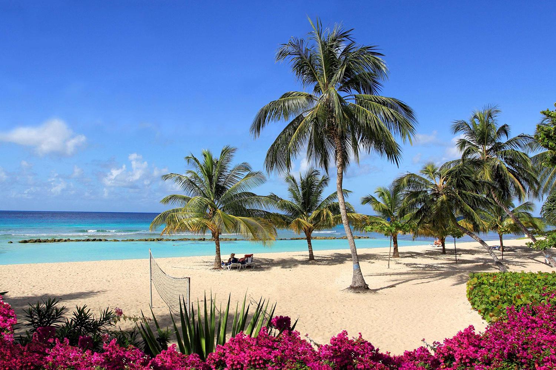 Карибы на Новый Год: Барбадос, Гренада, о. Бонэйр, Кюрасао, Аруба, Тринидад и Тобаго - Туристический оператор APL Travel (АПЛ Тревел)