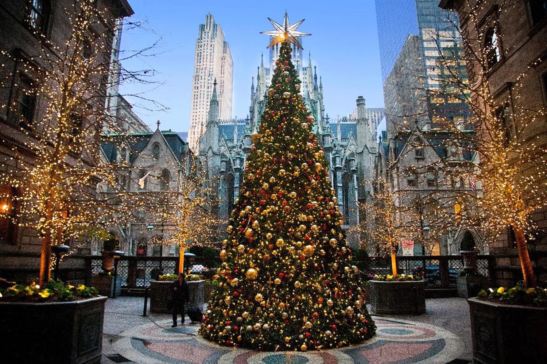 Тур с круизом на Рождество: Нью-Йорк, Сан Хуан, Сен-Мартен, Бастер, Сент-Джонс, Кастри - Туристический оператор APL Travel (АПЛ Тревел)