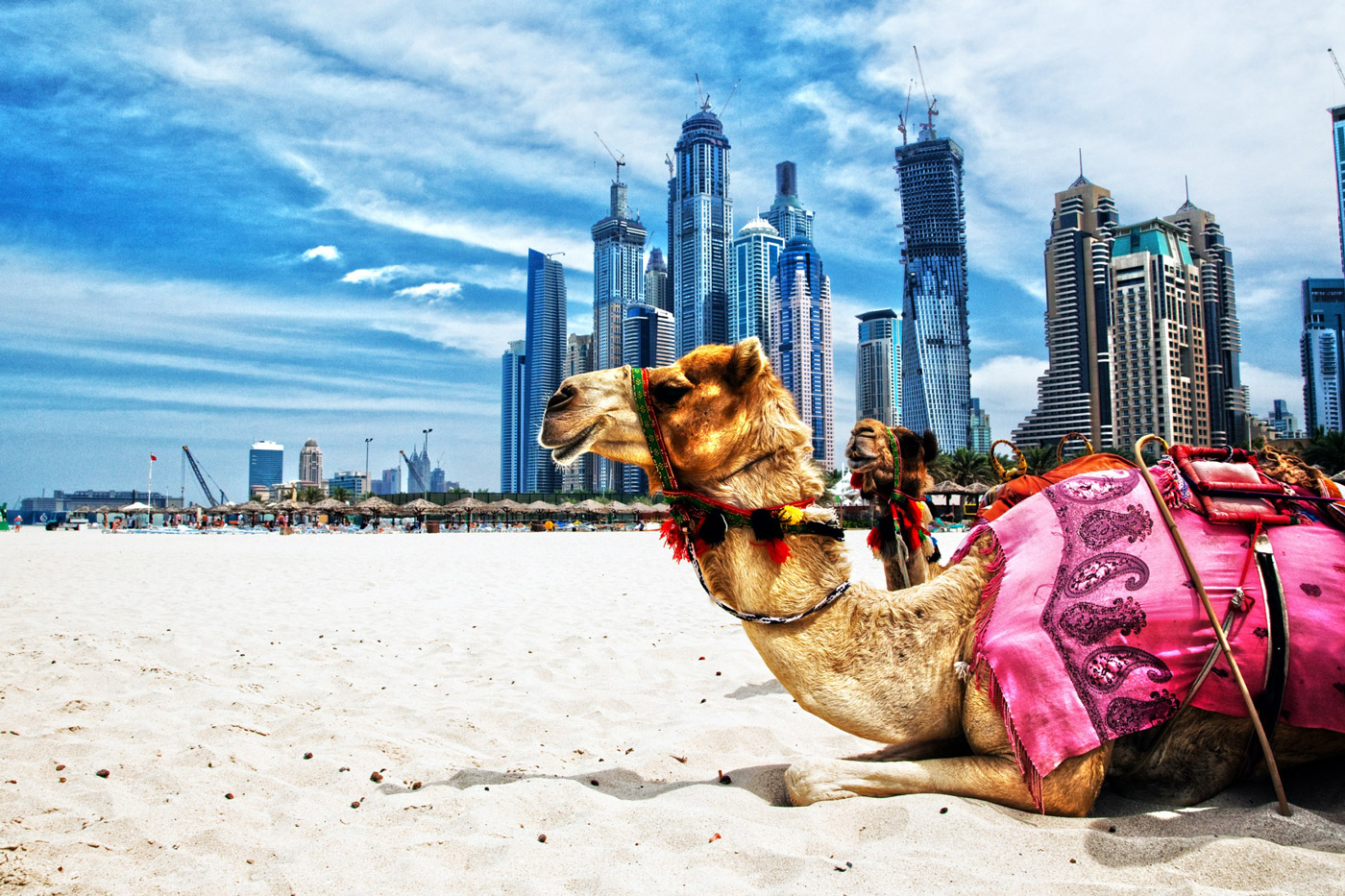 Тур с круизом на Costa Diadema 5*  по Персидскому заливу - Туристический оператор APL Travel (АПЛ Тревел)
